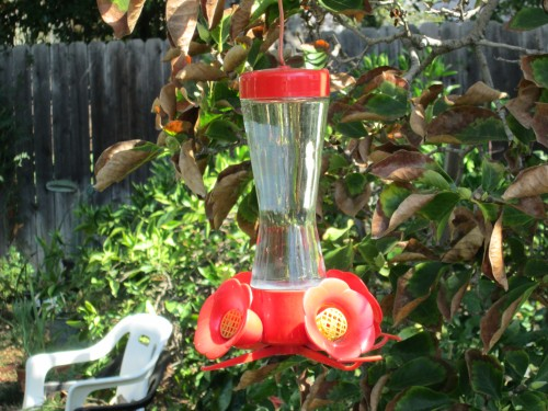 bird feeders, etc. 004