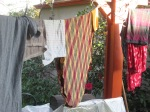 clothesline 016
