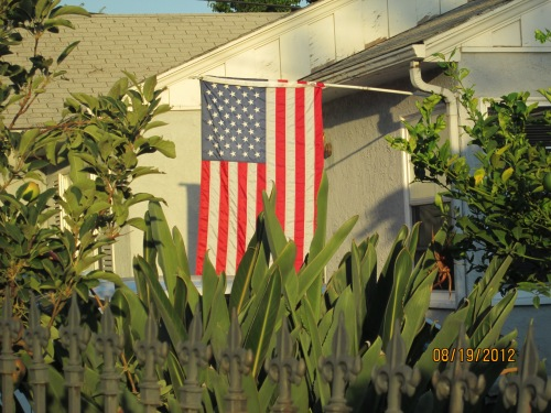 flags in the neighborhood 006