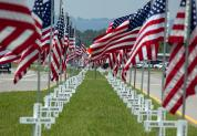 amer. flags veteran cemetary