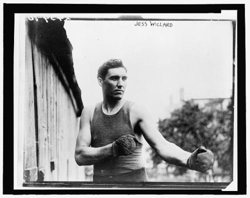 fighter jess willard 1915