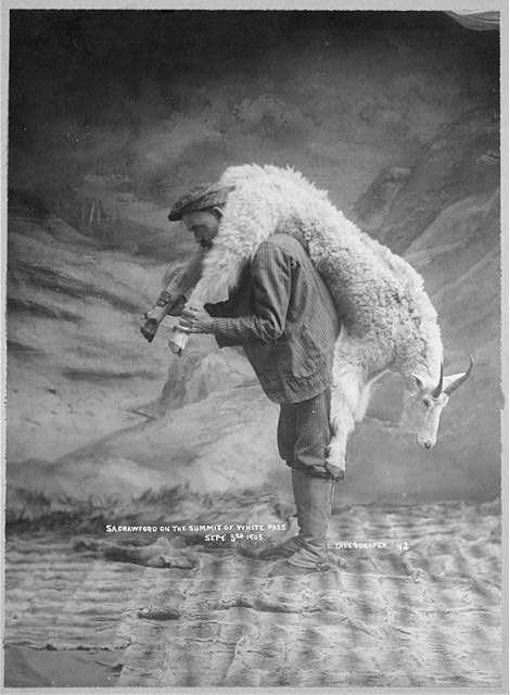man carrying a goat