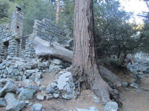 Mt. Baldy on New Years 119