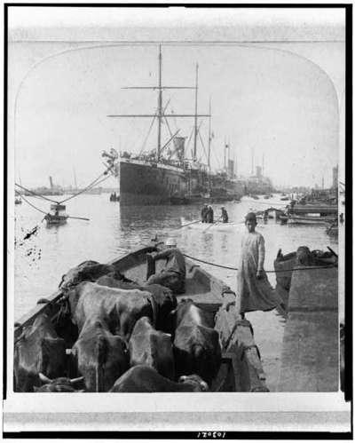 ship at cairo