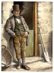 irish peasant farmer