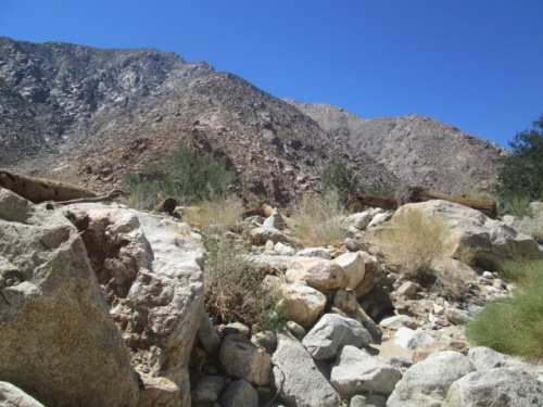 Borrego Springs trip Mar 14 030