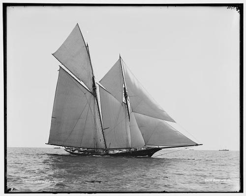 Volunteer 1899