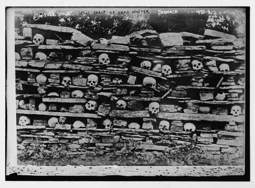 skull shelf formosa