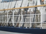 Sailing ship szczecin 048