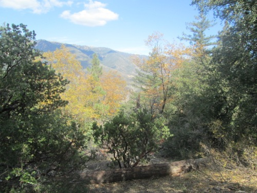 Mountain Oct.2014 022