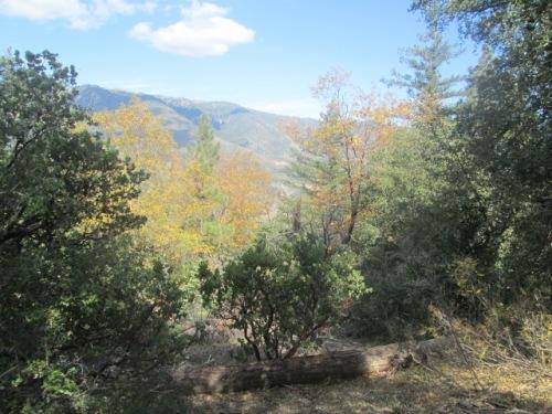 Mountain Oct.2014 022