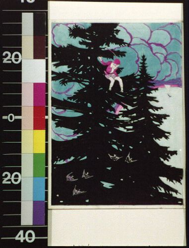 boy on a pine tree