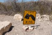 viper crossing