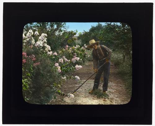 gardener 1921