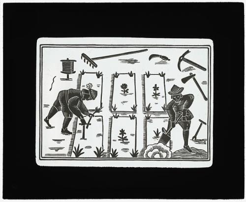 gardeners medieval