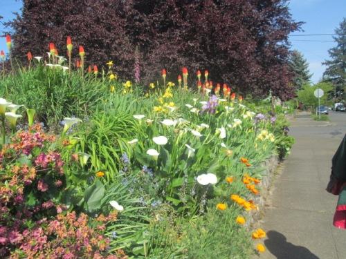 Portland May 2015 (2) 020
