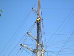 Ports of Call San Pedro 014