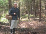 Poland mushroom picking 2016 (32)