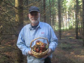 Poland mushroom picking 2016 (80)