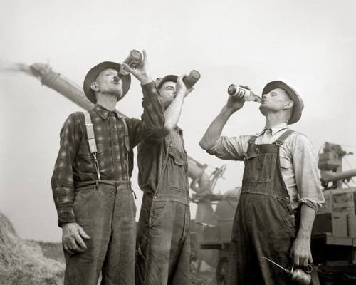 beer-drinking-farmers