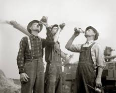 beer drinking farmers