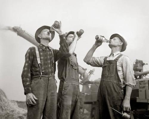 beer drinking farmers