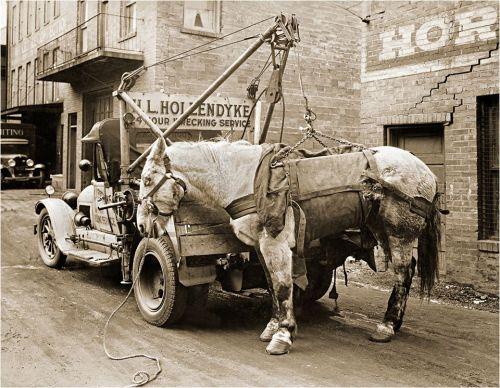 horse tow truck.jpg