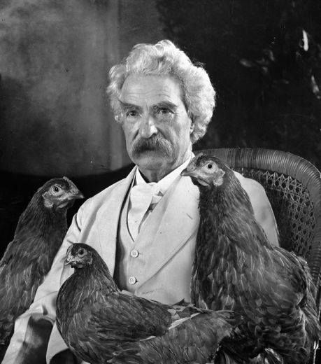 mark twain and chickens