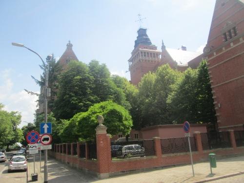 Szcz, 2018 neighborhood walk June 5 168