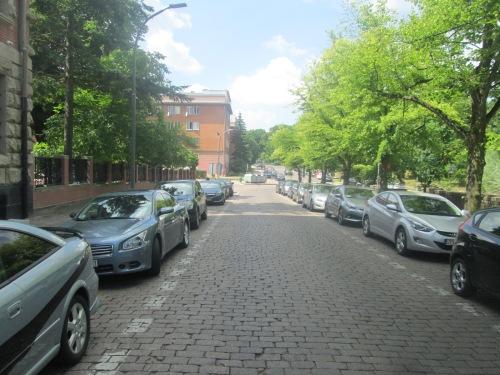 Szcz, 2018 neighborhood walk June 5 173