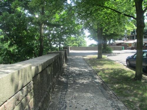 Szcz, 2018 neighborhood walk June 5 175