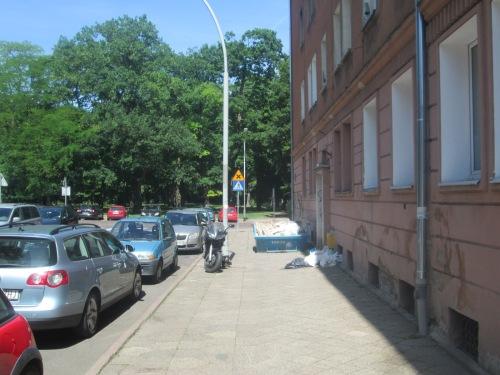 Szcz, 2018 neighborhood walk June 5 325