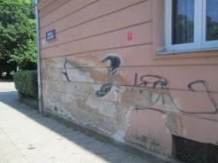 Szcz, 2018 neighborhood walk June 5 328