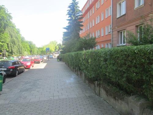 Szcz, 2018 neighborhood walk June 5 330